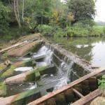 Low flows